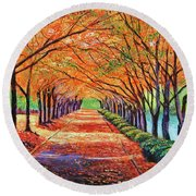 Autumn Tree Lane Round Beach Towel