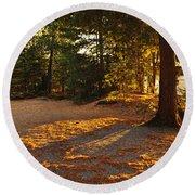 Autumn Trees Near Lake Round Beach Towel