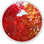 Autumn Trees Red Orange Fall Trees Art Baslee Troutman Round Beach Towel