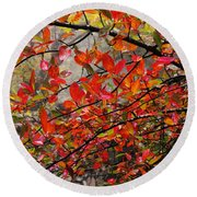 Autumn Trees Rock City Round Beach Towel