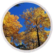 Autumn Yellow Foliage On Tall Trees Against A Blue Sky In Palermo Round Beach Towel