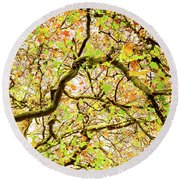 Autumnal Colours Round Beach Towel