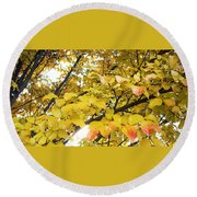 Autumns Gold Round Beach Towel