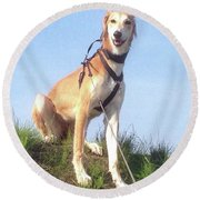 Ava-grace, Princess Of Arabia  #saluki Round Beach Towel by John Edwards