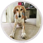 Ava On Her First Birthday #saluki Round Beach Towel