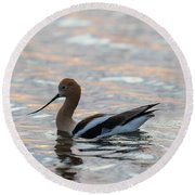Avocet Sunset Round Beach Towel