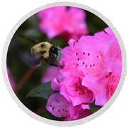 Azalea And Mr. Bumbles 05 Round Beach Towel