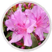 Azalea Garden Art Prints Pink Azaleas Flowers Baslee Troutman Round Beach Towel