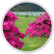 Azaleas At The Azores Round Beach Towel