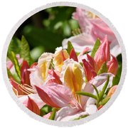 Azaleas Pink Orange Yellow Azalea Flowers 6 Summer Flowers Art Prints Baslee Troutman Round Beach Towel