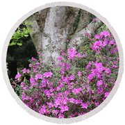 Azaleas With Tree Round Beach Towel