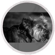B And W Dog Round Beach Towel