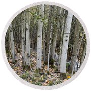 Babbling Brook Round Beach Towel