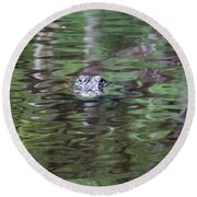 Babcock Wilderness Ranch - Alligator Lake - Heads Up Round Beach Towel