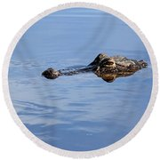 Babcock Wilderness Ranch - Alligator Lake - Waiting For Prey Round Beach Towel
