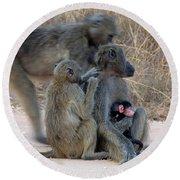 Baboon Family Round Beach Towel