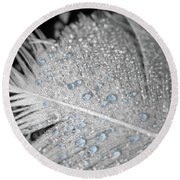Baby Blue Dew Drops On Feather Round Beach Towel