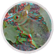 Baby Bunny - Use Red-cyan 3d Glasses Round Beach Towel