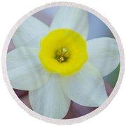 Baby Daffodil Round Beach Towel