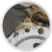 Baby Hummers 2 Round Beach Towel