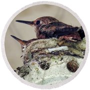 Baby Hummers Round Beach Towel