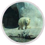 Baby Polar Bear Round Beach Towel