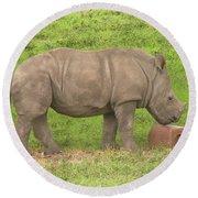Baby Rhino Chilling Round Beach Towel