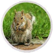 Baby Squirrel's First Peanut Round Beach Towel