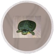 Baby Turtle Looking Up Round Beach Towel