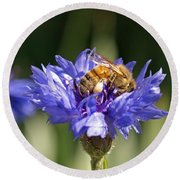Bachelor Button And Bee Round Beach Towel