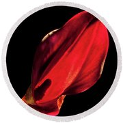 Back Lit Black Calla Lily Round Beach Towel