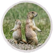 Back To Back Prairie Dogs Round Beach Towel