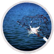 Back To The Bay Blue Crab Round Beach Towel