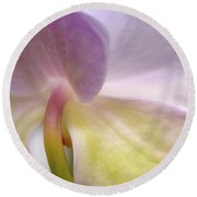 Backlit Orchid Round Beach Towel