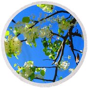Backlit White Tree Blossoms Round Beach Towel
