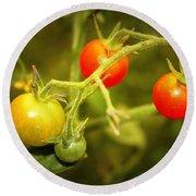 Backyard Garden Series - Cherry Tomatoes Round Beach Towel