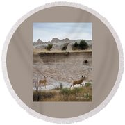 Badlands Deer Sd Round Beach Towel