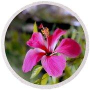 Bahamian Flower Round Beach Towel
