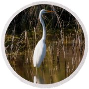Bailey Tract Egret Two Round Beach Towel