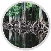 Bald Cypress Trees Along The Withlacoochee River Round Beach Towel