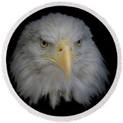 Bald Eagle 1 Round Beach Towel