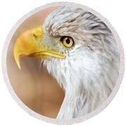 Bald Eagle 15 Round Beach Towel