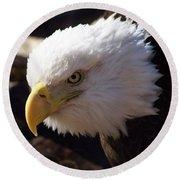 Bald Eagle 2 Round Beach Towel