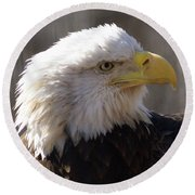 Bald Eagle 3 Round Beach Towel