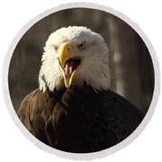 Bald Eagle 4 Round Beach Towel