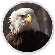Bald Eagle 5 Round Beach Towel
