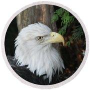 Bald Eagle #8 Round Beach Towel