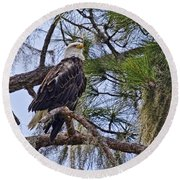 Bald Eagle By H H Photography Of Florida Round Beach Towel