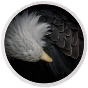 Bald Eagle Cleaning Round Beach Towel