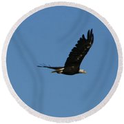 Bald Eagle Flight  Round Beach Towel